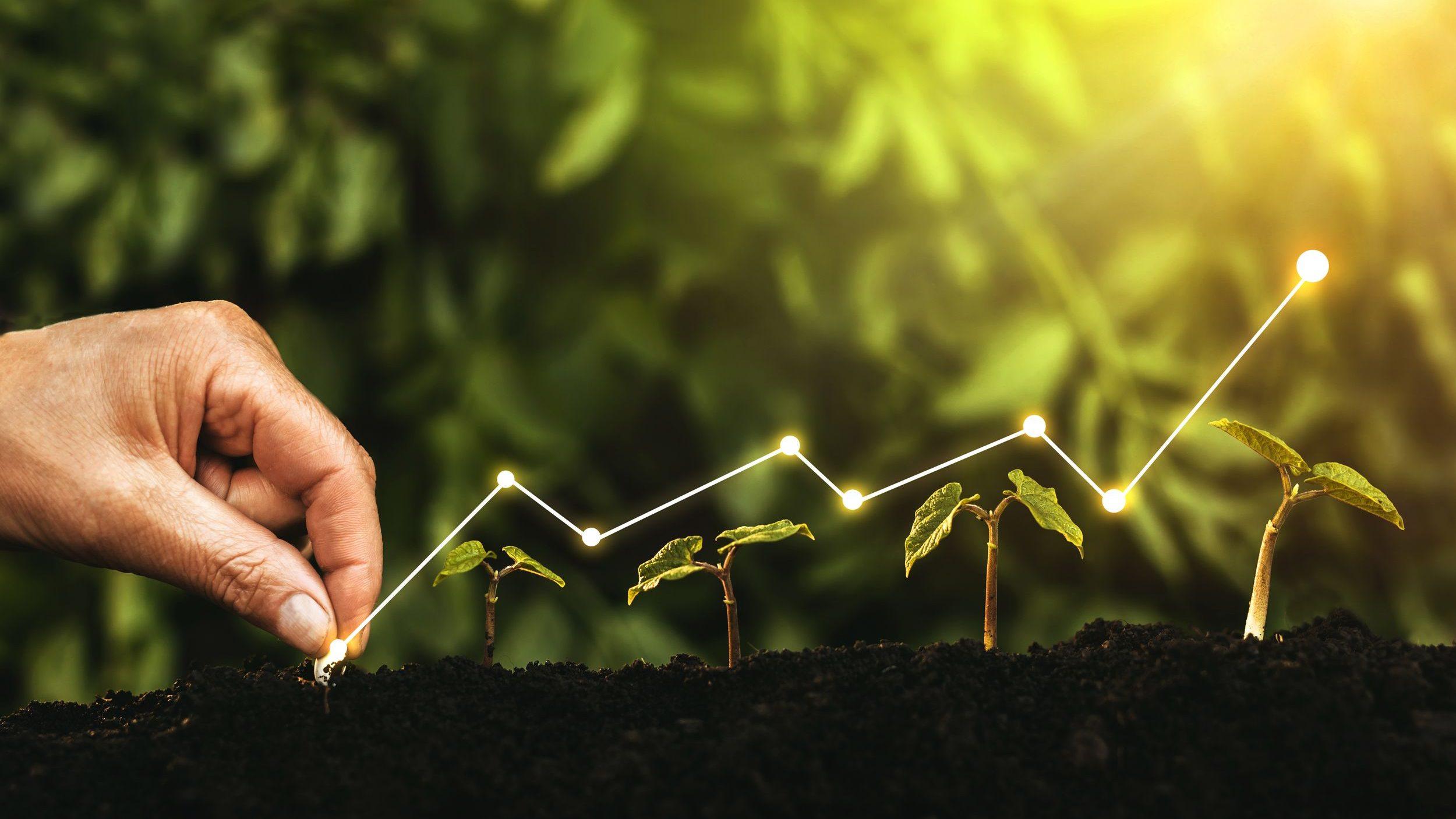 Ni croissance verte, ni décroissance !